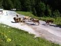 Steiermark16
